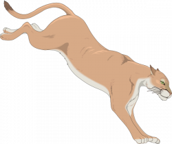 Cougar clipart animated