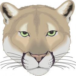 Cougar clipart cartoon