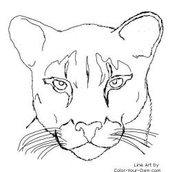 Drawn panther face