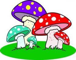 Colors clipart mushroom