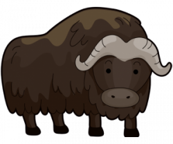 Muskox clipart capital letter