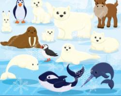 Orca clipart arctic seal