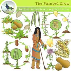 Native American clipart squash