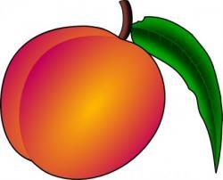 Nectarine clipart