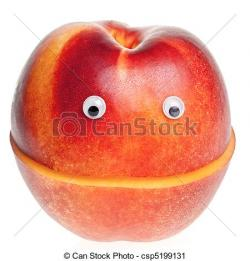 Nectarine clipart orange fruit