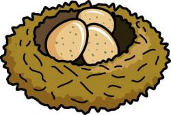 Bird's Nest clipart