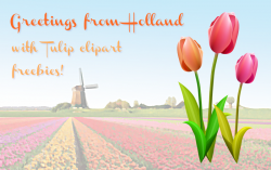 Netherlands clipart spring tulip