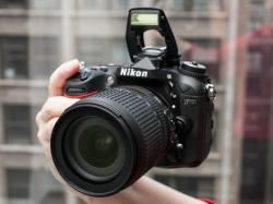 Nikon clipart non living