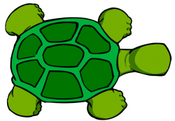 See clipart turtle top