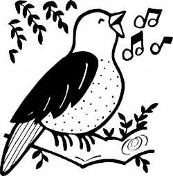 Songbird clipart black and white