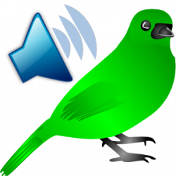 Noise clipart song bird