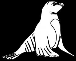 Sea Otter clipart nutria