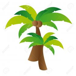 Coconut clipart coconut leaves