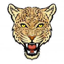 Jaguar clipart ocelot