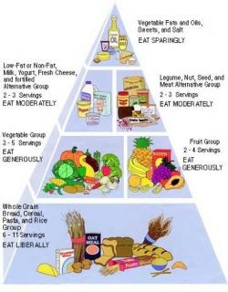 Grains clipart balanced diet