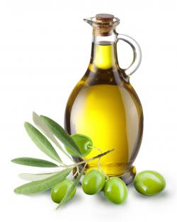 Olive Oil clipart cooking oil