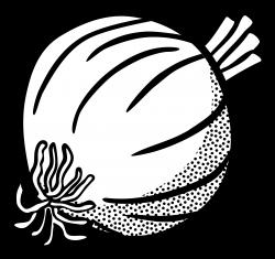 Onion clipart outline