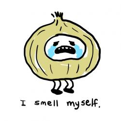 Onion clipart smelly