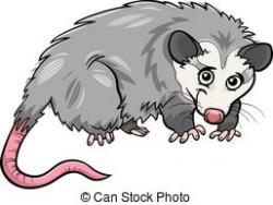 Opossum clipart