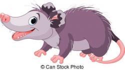 Possum clipart cartoon