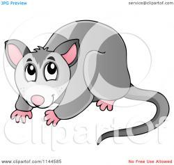 Possum clipart australian possum