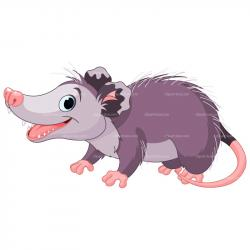 Possum clipart face