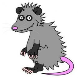 Possum clipart length