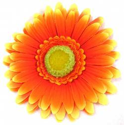 Yellow Flower clipart gerbera daisy