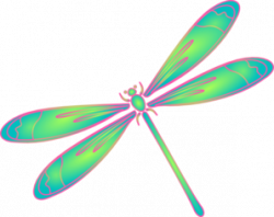 Dragonfly clipart whimsical