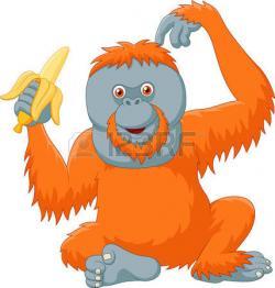 Orangutan clipart orange