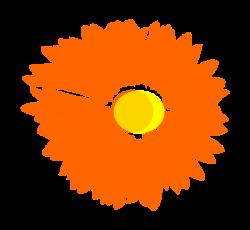 Chrysanthemum clipart orange flower