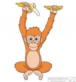 Orange clipart orangutan