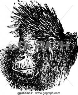 Orangutan clipart head