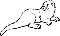 Nutria clipart black and white