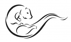 Drawn otter clipart