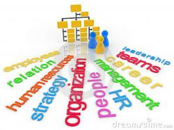 Structure clipart org structure