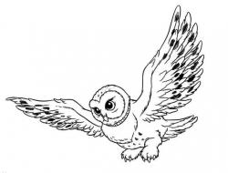 Burrowing Owl clipart flying