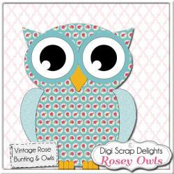 Owlet clipart shabby chic