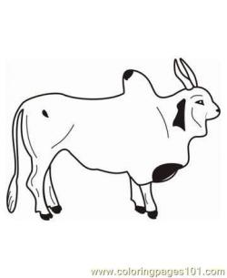 Ox clipart outline