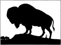Bison clipart dead