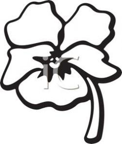 Pansy clipart black and white
