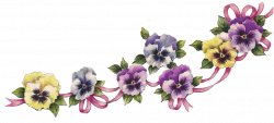 Pansy clipart border