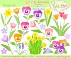 Pansy clipart spring clip