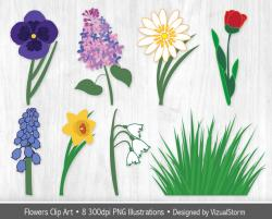 Pansy clipart spring flower
