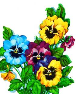 Pansy clipart vintage spring