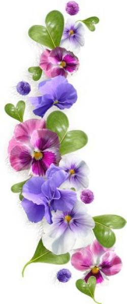 Pansy clipart violet flower