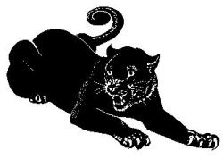 Black Panther clipart chicago