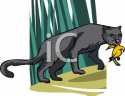 Dead clipart panther