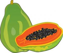 Papaya clipart cartoon