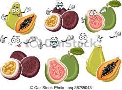 Guava clipart friuts